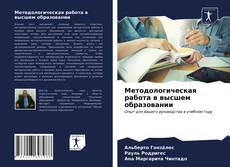 Bookcover of Методологическая работа в высшем образовании
