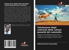 Bookcover of Valutazione degli anticorpi della catena pesante del cammello
