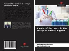 Portada del libro de Cancer of the cervix in the wilaya of Naâma, Algeria