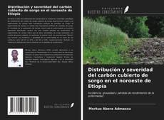 Bookcover of Distribución y severidad del carbón cubierto de sorgo en el noroeste de Etiopía