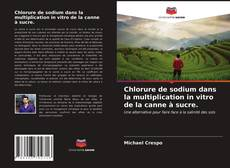 Buchcover von Chlorure de sodium dans la multiplication in vitro de la canne à sucre.
