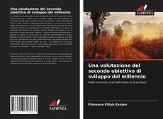 Bookcover of Una valutazione del secondo obiettivo di sviluppo del millennio
