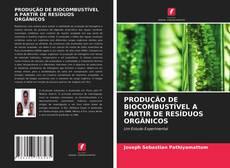 Capa do livro de PRODUÇÃO DE BIOCOMBUSTÍVEL A PARTIR DE RESÍDUOS ORGÂNICOS