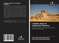 Copertina di L'Egitto dopo la conquista islamica