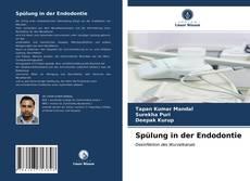 Bookcover of Spülung in der Endodontie
