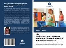 Buchcover von Die Fachkrankenschwester und die Schmerzkontrolle in der Geburtshilfe
