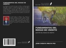 FUNDAMENTOS DEL RIESGO DE CRÉDITO的封面