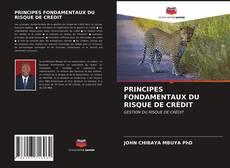 Couverture de PRINCIPES FONDAMENTAUX DU RISQUE DE CRÉDIT