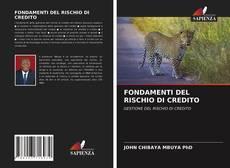 Bookcover of FONDAMENTI DEL RISCHIO DI CREDITO