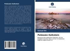 Paläozän Kalkstein kitap kapağı