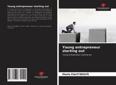 Copertina di Young entrepreneur starting out