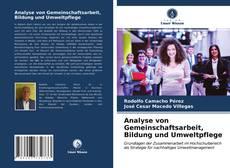 Buchcover von Analyse von Gemeinschaftsarbeit, Bildung und Umweltpflege