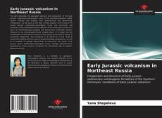 Couverture de Early Jurassic volcanism in Northeast Russia