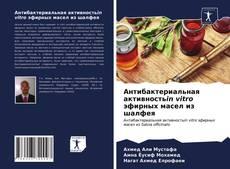 Portada del libro de Антибактериальная активностьin vitro эфирных масел из шалфея