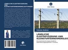 Bookcover of LÄNDLICHE ELEKTRIFIZIERUNG UND KLEINSTUNTERNEHMENSLEISTUNGEN