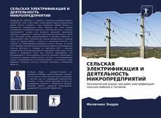 СЕЛЬСКАЯ ЭЛЕКТРИФИКАЦИЯ И ДЕЯТЕЛЬНОСТЬ МИКРОПРЕДПРИЯТИЙ kitap kapağı