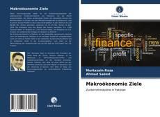 Makroökonomie Ziele kitap kapağı