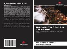 HYDROELECTRIC DAMS IN THE AMAZON: kitap kapağı