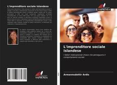 Portada del libro de L'imprenditore sociale islandese