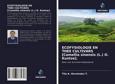ECOFYSIOLOGIE EN THEE CULTIVARS [Camellia sinensis (L.) O. Kuntze]. kitap kapağı