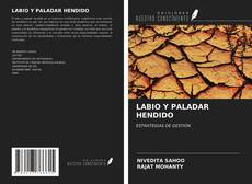 LABIO Y PALADAR HENDIDO kitap kapağı