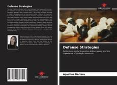 Bookcover of Defense Strategies