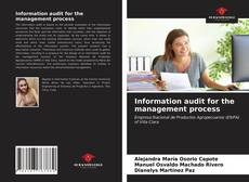 Bookcover of Information audit for the management process