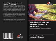 Copertina di Metodologia per fare percorsi turistici a Veraguas