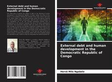 Bookcover of External debt and human development in the Democratic Republic of Congo