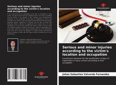 Bookcover of Serious and minor injuries according to the victim's location and occupation