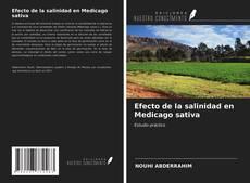 Couverture de Efecto de la salinidad en Medicago sativa