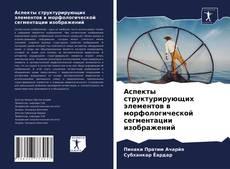 Аспекты структурирующих элементов в морфологической сегментации изображений kitap kapağı