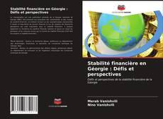 Обложка Stabilité financière en Géorgie : Défis et perspectives