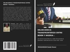 Portada del libro de DELINCUENCIA TRANSFRONTERIZA ENTRE BENÍN Y NIGERIA :