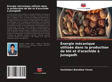 Обложка Énergie mécanique utilisée dans la production de blé et d'arachide à Junagadh