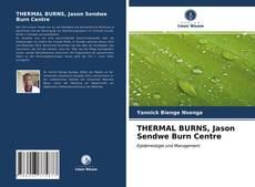 Bookcover of THERMAL BURNS, Jason Sendwe Burn Centre