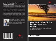 Capa do livro de John the Baptist, what a model for pastoral ministry!