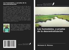 Bookcover of Los humedales, a prueba de la descentralización