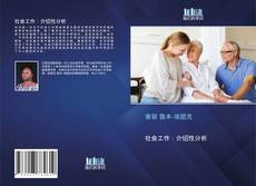 社会工作:介绍性分析的封面