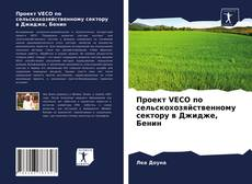 Portada del libro de Проект VECO по сельскохозяйственному сектору в Джидже, Бенин