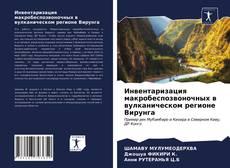 Обложка Инвентаризация макробеспозвоночных в вулканическом регионе Вирунга