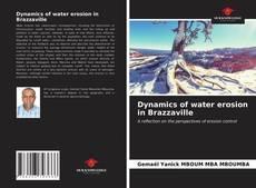 Buchcover von Dynamics of water erosion in Brazzaville