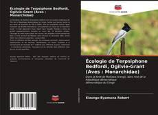 Borítókép a  Écologie de Terpsiphone Bedfordi, Ogilvie-Grant (Aves : Monarchidae) - hoz