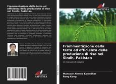 Bookcover of Frammentazione della terra ed efficienza della produzione di riso nel Sindh, Pakistan