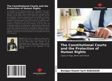 Bookcover of The Constitutional Courts and the Protection of Human Rights