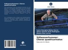 Süßwasserhummer: Cherax quadricarinatus kitap kapağı