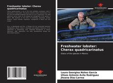 Bookcover of Freshwater lobster: Cherax quadricarinatus