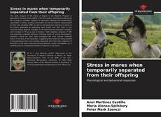 Bookcover of Stress in mares when temporarily separated from their offspring