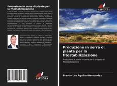 Copertina di Produzione in serra di piante per la fitostabilizzazione