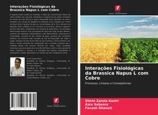 Bookcover of Interações Fisiológicas da Brassica Napus L com Cobre